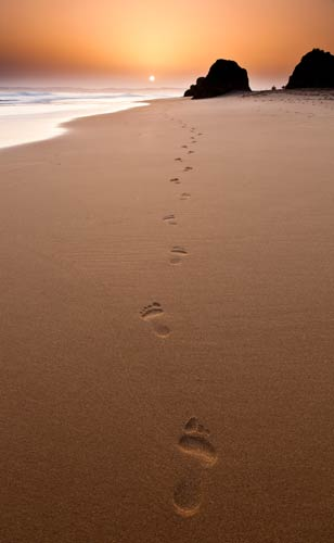 wpid-footsteps-in-the-sand-rick-bowden