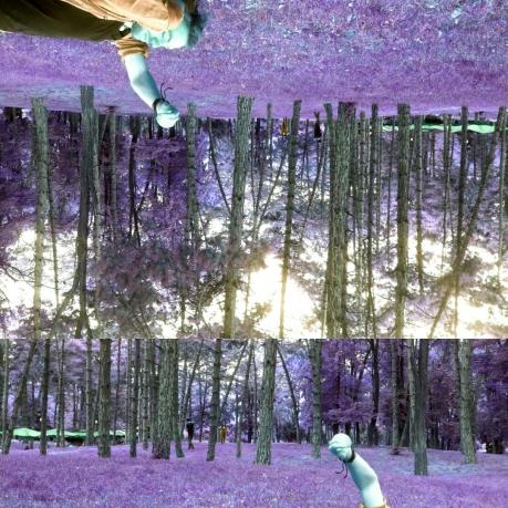 Kushtrim Thaqi - Autumn