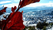 kushtrim thaqi - snow